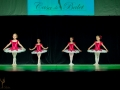 Casa de Balet Spectacol 13 iun2015 ora 19-37