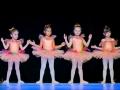 Casa de Balet Spectacol 13 iun2015 ora 19-86