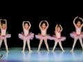 Casa de Balet Spectacol 14 iun2015 ora 11-116
