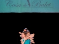 Casa de Balet Spectacol 14 iun2015 ora 11-12