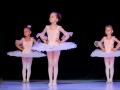 Casa de Balet Spectacol 14 iun2015 ora 11-83