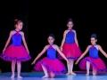 Casa de Balet Spectacol 14 iun 2015 ora 19-18