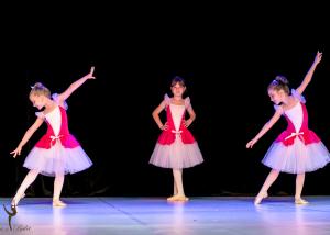 Casa de Balet Spectacol 13 iun2015 ora 11-94